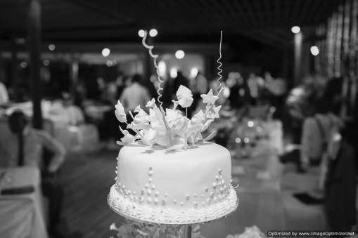 Mauritius Best Wedding Photo- Christian, churn, beach wedding (454)