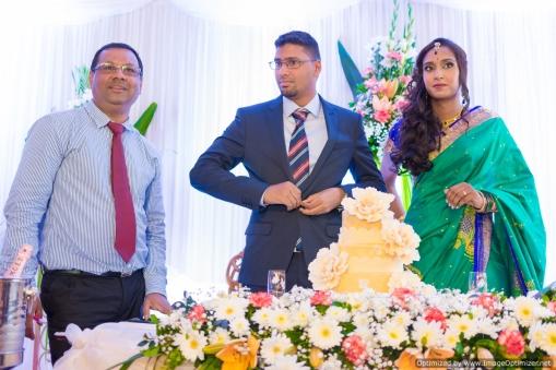 best-wedding-photographer-mauritius-tamil-wedding-engagement-civil-wedding-coromandel-diksh-potter-photographer-19